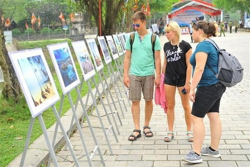 Photo exhibition highlights Vietnam's sea and islands   - ảnh 1