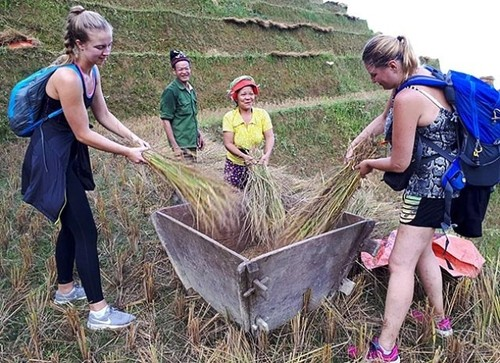 Ha Giang farmers engage in community-based tourism - ảnh 3