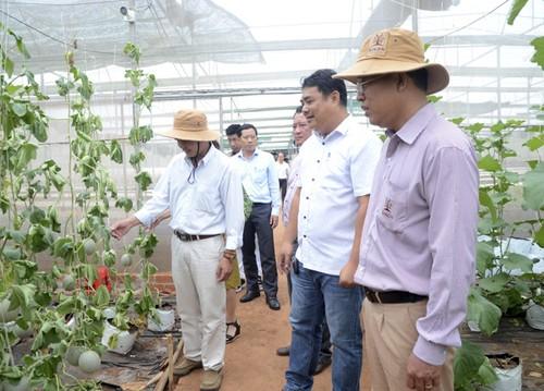 Ba Ria-Vung Tau develops eco-tourism - ảnh 2