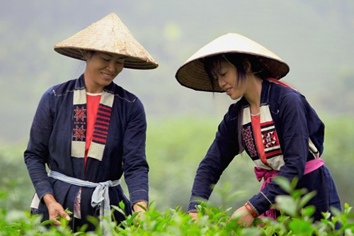 Traditional clothes of the Cao Lan - ảnh 1