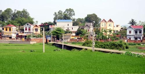 Investir davantage dans le développement agricole et rural - ảnh 1