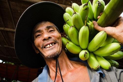 Au Vietnam, quelle est la meilleure saison pour les fruits? - ảnh 3