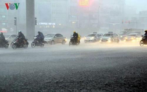Cette année, au Vietnam, la pluie est-elle suffisante? - ảnh 1