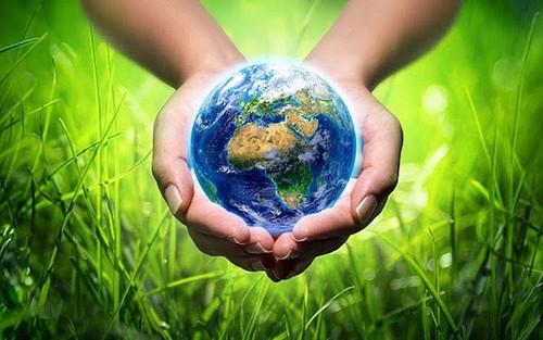 Actions en faveur de l'environnement au Vietnam - ảnh 1