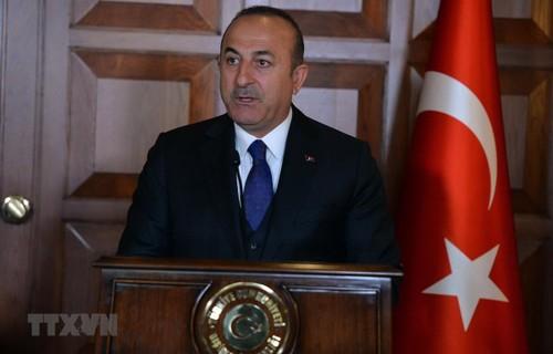 Rusia y Turquía se coordinan para aliviar la tensión en el noroeste de Siria - ảnh 1