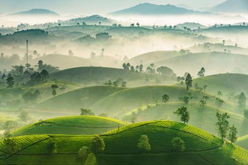 Logros de la fotografía vietnamita en concursos internacionales - ảnh 1