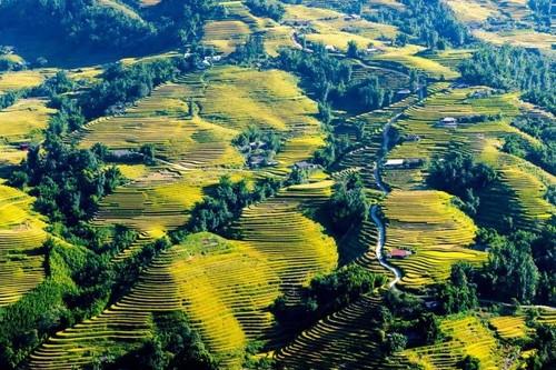 Destinos imperdibles para turistas extranjeros en Vietnam - ảnh 4