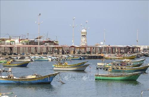 Israel alivia algunas restricciones en la Franja de Gaza - ảnh 1