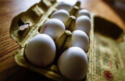 Italy seizes products over Fipronil eggs scandal - ảnh 1
