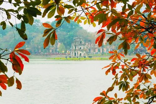 Màu áo mới của Hồ Gươm giữa mùa cây thay lá - ảnh 5