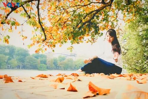 Màu áo mới của Hồ Gươm giữa mùa cây thay lá - ảnh 3