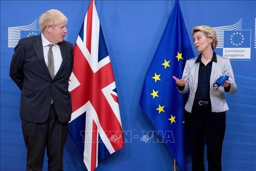 Brexit : Londres et Bruxelles maintiennent une lueur d'espoir - ảnh 1