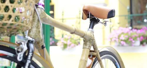 Un vélo en bambou «made in Vietnam» - ảnh 3