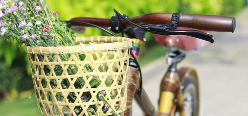 Un vélo en bambou «made in Vietnam» - ảnh 4