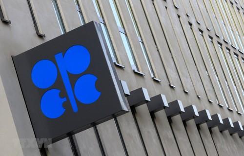 L'Opep croit toujours à l'avenir de la demande pétrolière - ảnh 1