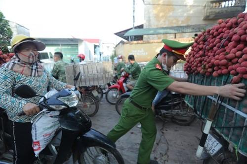 Ấn tượng hàng dài xe chở vải nối đuôi nhau đến điểm thu mua ở Bắc Giang - ảnh 9
