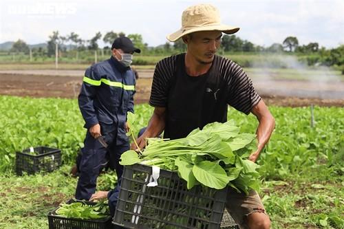 Tình người trong đại dịch ở Thành phố Hồ Chí Minh - ảnh 8