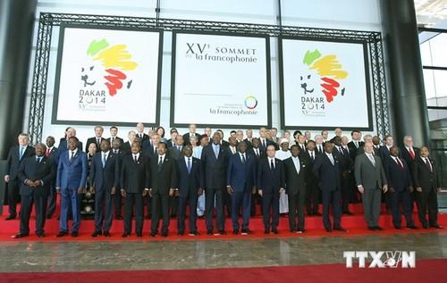 越南呼吁法语国家加强团结共同努力应对全球性挑战 - ảnh 1