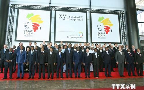 越南积极参与法语国家经济战略 - ảnh 1