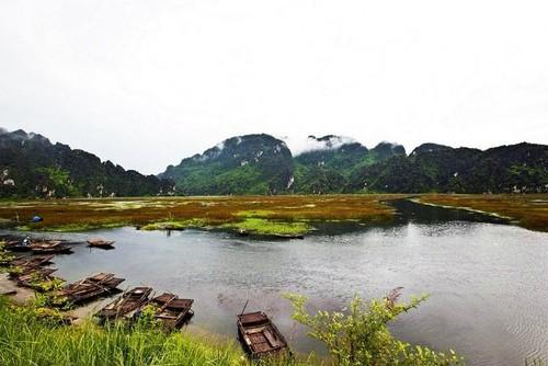 保护生态环境—宁平省面向发展可持续旅游 - ảnh 2