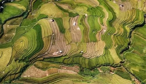 Vietnamesische Fotografie hinterlässt Eindrücke bei internationalen Fotowettbewerben - ảnh 2