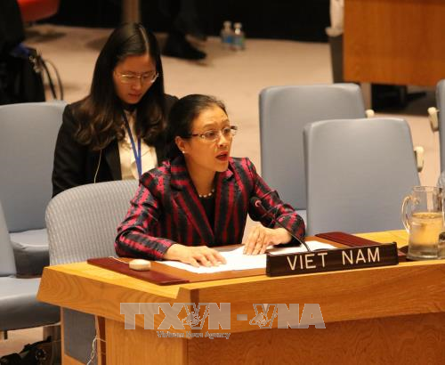 Vietnam berinisiatif dan aktif ikut serta dalam aktivitas-aktivitas menjaga perdamaian PBB - ảnh 1