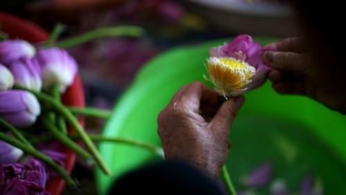 Ханойский лотосовый чай - утончённый вкус и изысканный аромат - ảnh 12