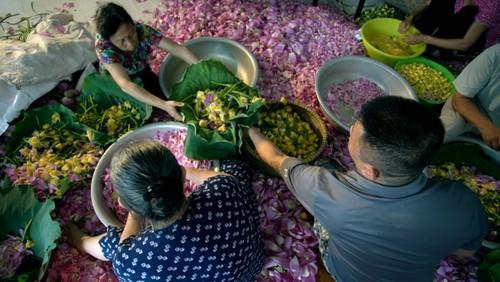 Ханойский лотосовый чай - утончённый вкус и изысканный аромат - ảnh 16