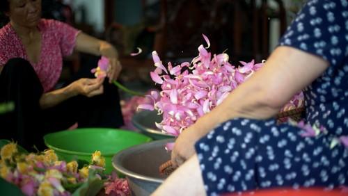 Ханойский лотосовый чай - утончённый вкус и изысканный аромат - ảnh 21