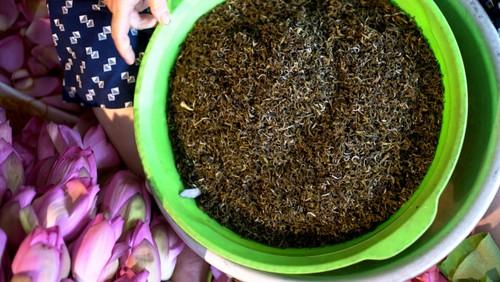 Ханойский лотосовый чай - утончённый вкус и изысканный аромат - ảnh 26