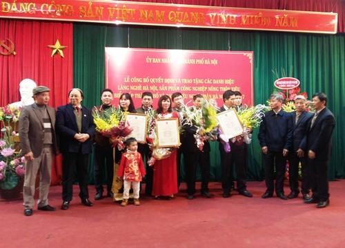 Thành phố Hà Nội trao tặng danh hiệu làng nghề, nghệ nhân  - ảnh 1