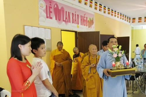 Trung tâm văn hóa Phật giáo cấp tỉnh đầu tiên của người Việt tại Cộng hòa Czech - ảnh 2