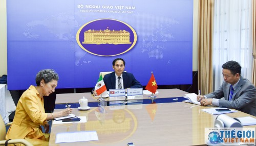 Hội đàm trực tuyến cấp Thứ trưởng ngoại giao Việt Nam-Mexico - ảnh 1