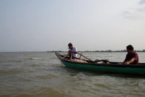Về cồn An Lộc săn cá bông lau sông Hậu - ảnh 3