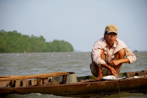 Về cồn An Lộc săn cá bông lau sông Hậu - ảnh 5