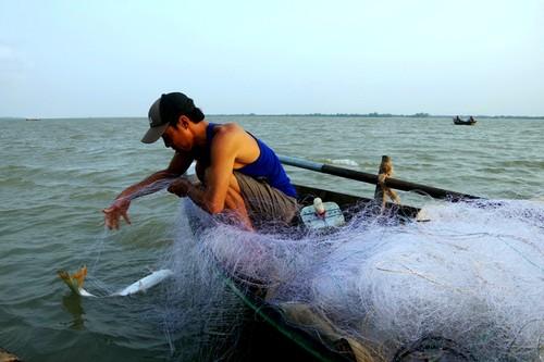 Về cồn An Lộc săn cá bông lau sông Hậu - ảnh 8
