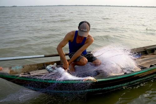 Về cồn An Lộc săn cá bông lau sông Hậu - ảnh 10
