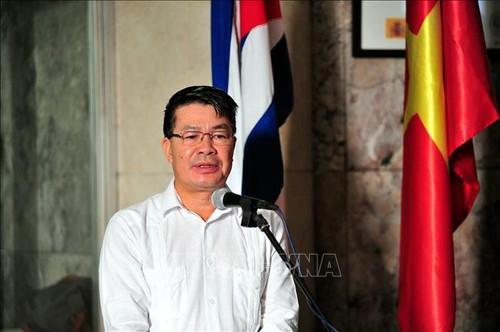 Cộng đồng Việt Nam tại các nước đón năm mới 2021 - ảnh 1