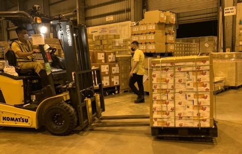 Xuất khẩu vải thiều sang Nhật Bản số lượng tăng, hiệu quả kinh tế cao - ảnh 1
