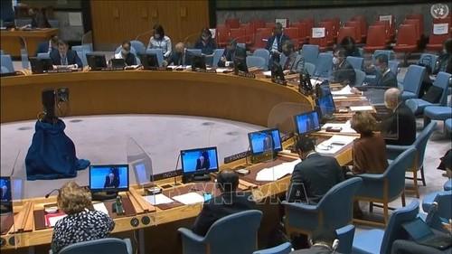 HĐBA thảo luận về tác động của đại dịch COVID-19 đến nỗ lực chống khủng bố - ảnh 1