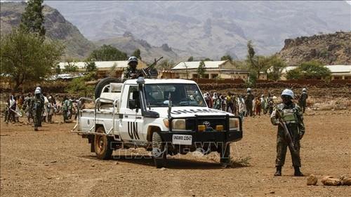 Việt Nam đánh giá cao đóng góp của phái bộ UNAMID - ảnh 1