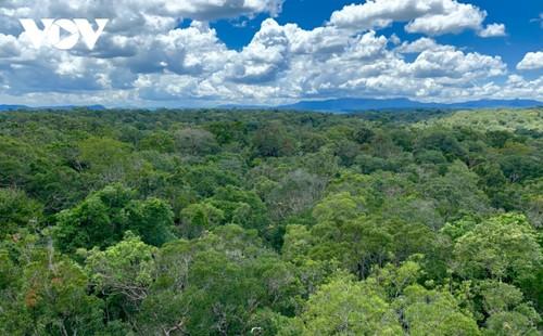 Kon Ha Nung Plateau recognized by UNESCO as Vietnam's new Biosphere Reserve - ảnh 1