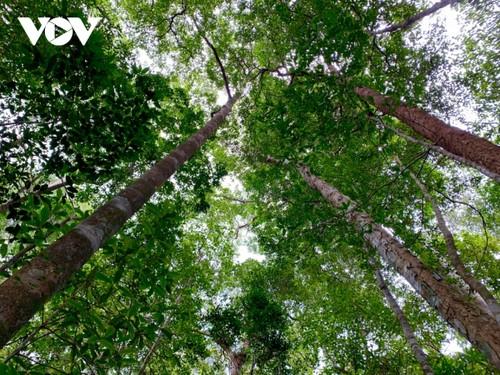 Kon Ha Nung Plateau recognized by UNESCO as Vietnam's new Biosphere Reserve - ảnh 2