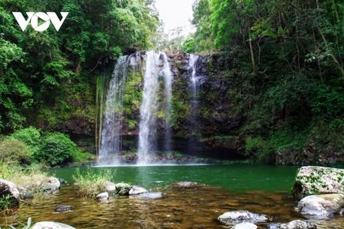 Kon Ha Nung Plateau recognized by UNESCO as Vietnam's new Biosphere Reserve - ảnh 8