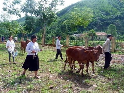 Việt Nam nỗ lực bảo vệ và thúc đẩy quyền của mọi người dân, đóng góp vào những giá trị chung của nhân loại về quyền con người - ảnh 1