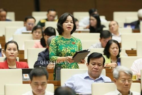 Quốc hội thảo luận Luật Tổ chức Chính phủ và Luật Tổ chức chính quyền địa phương - ảnh 1
