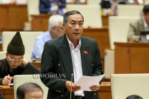 Quốc hội thảo luận Luật Tổ chức Chính phủ và Luật Tổ chức chính quyền địa phương - ảnh 2
