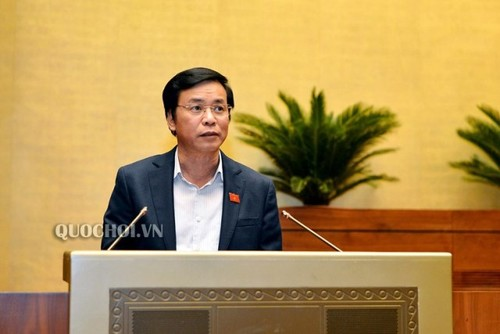 Quốc hội thảo luận Luật Tổ chức Chính phủ và Luật Tổ chức chính quyền địa phương - ảnh 3