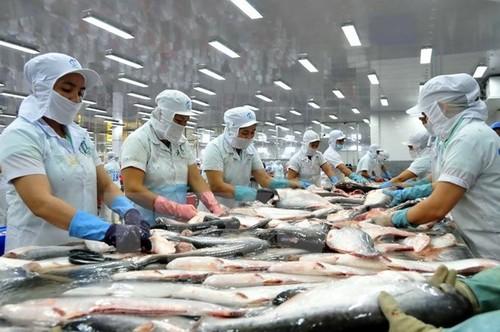 Xuất khẩu cá tra sang Châu Âu 5 tháng giảm - ảnh 1