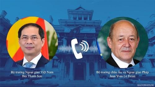 Việt Nam – Pháp cần thiết duy trì các hoạt động song phương ngay trong bối cảnh đại dịch - ảnh 1